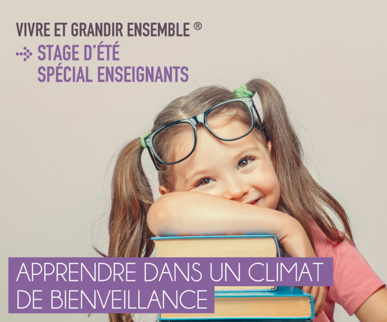 image-stage-ete-enseignants-1